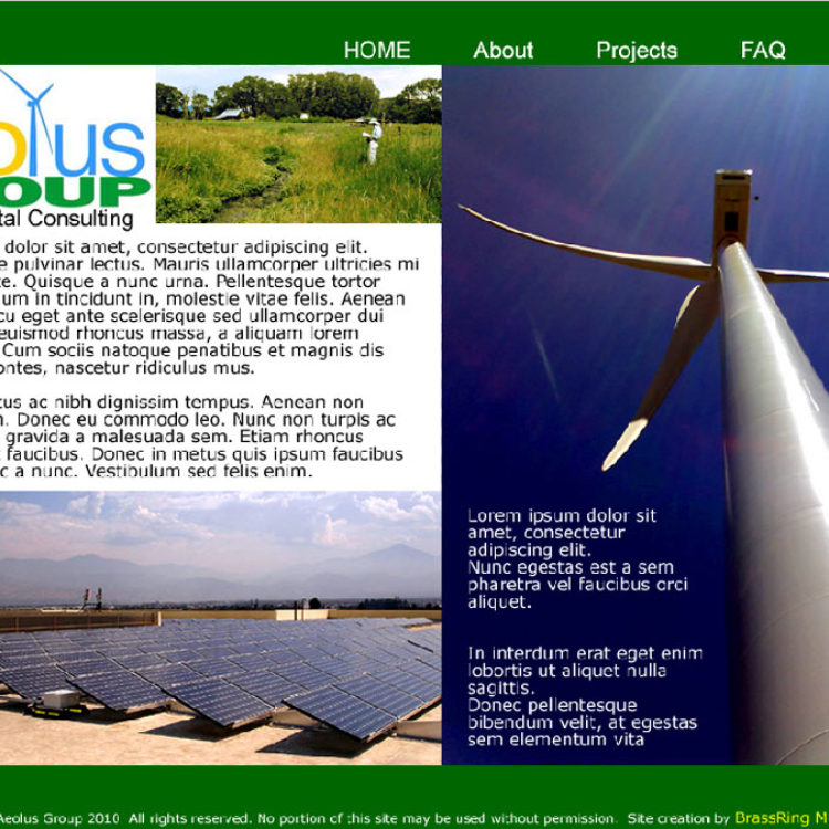 Aeolus Group Website Design (incl. logo)