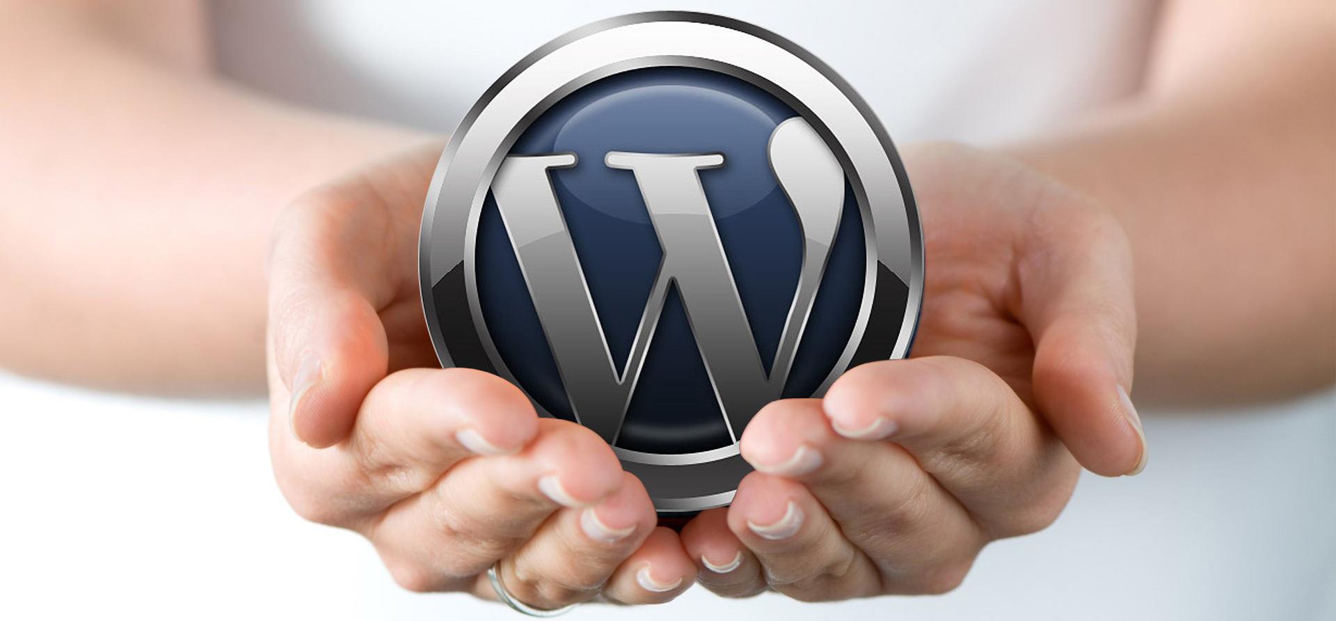 Image: hands holding WordPress logo ball